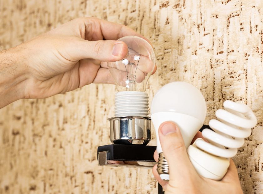 handyman changing electricity efficiency light bulb concept. various light bulbs at person hand. replacing lightbulb at wall lamp